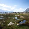 Marshes below Golden Bear Lake