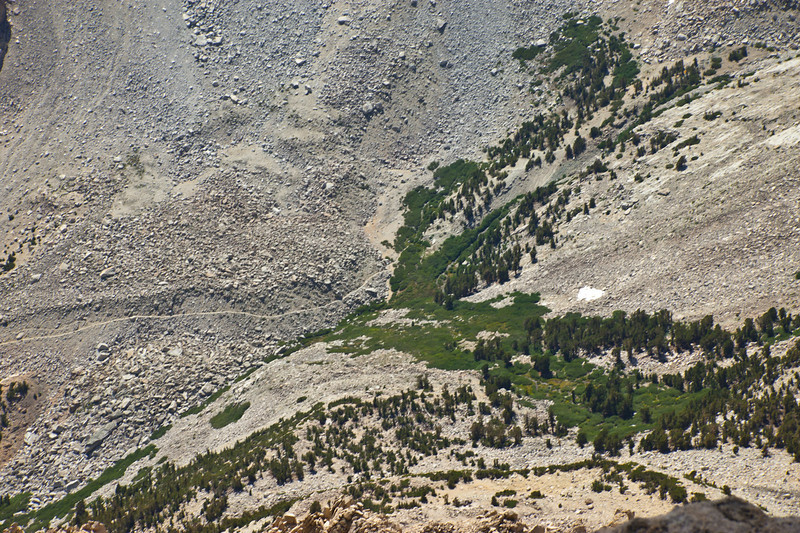 The Shepherd Pass trail and Anvil Camp from above.