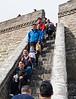 Tilera group on the steps