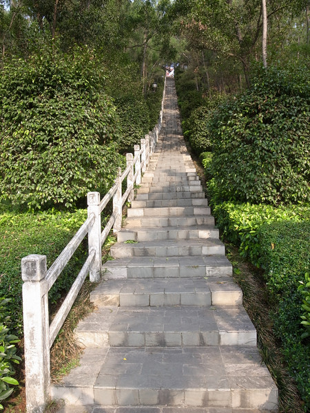 stairs up the hill