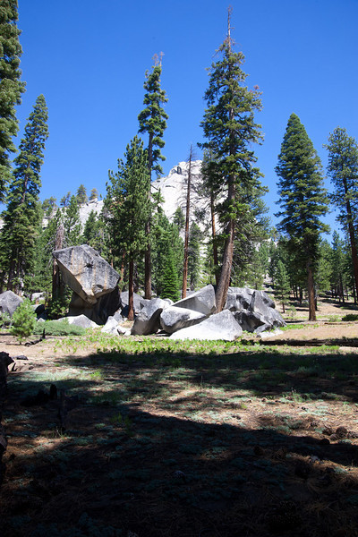 Boulders through the forest, alongside Starr King