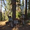 At the Mono Meadows trailhead
