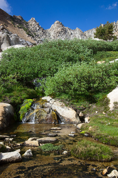 Water source near camp