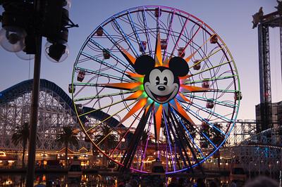 Colorful Wheel