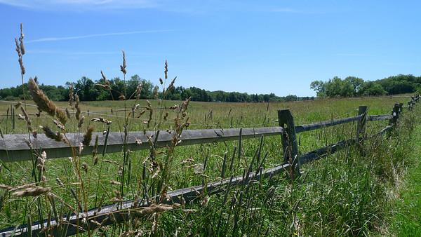 Knox Farm
