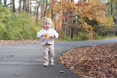 Eden Fall Leaves