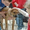 Puppy love: Seven-year-old Rebecca O'Leary Shook pets a puppy held by volunteer Michael Humphrey at Honey Creek Mall Saturday morning.