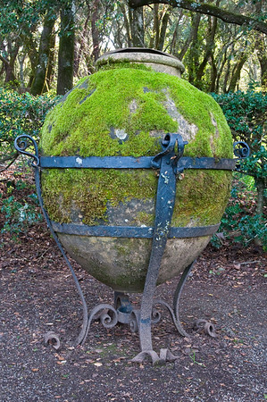 Cool, moss covered flower pot at the edge of the garden.