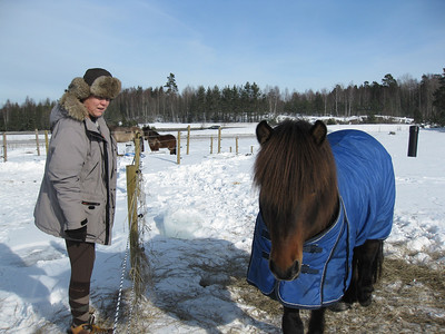 Kristín og einn hestur í peysu... hann var töffari