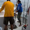 Deckhand Chris holt unseren Fang zum Vorschein damit er zugeschnitten werden kann...
