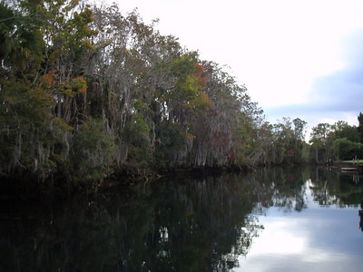 Kings Bay, Crystal River Preserve