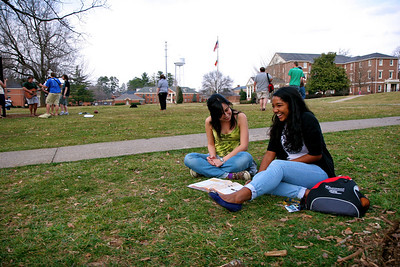 Various students on the quad.