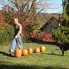 Andy washing the pumpkins before the slaughter