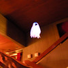 kinda hard to tell what this is - many of my photos turned out blurry cuz the lights were turned down ... this was a ghost that flew accross the room