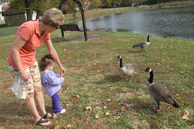 feeding geese with Grandma