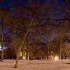 Seit Schneeeinbruch haben wir im Loring Park zehntausende von Kraehen die dort jeden Abend uebernachten...sehr unheimlich...