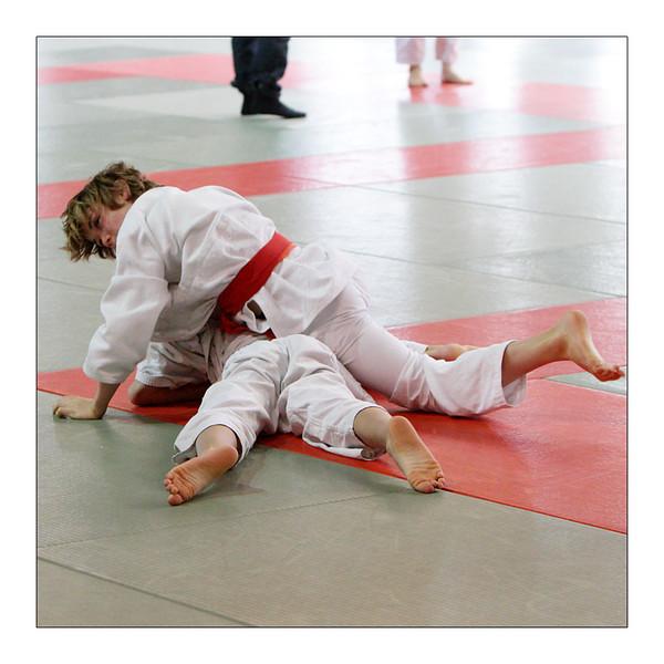 Janvier 2010 Judo