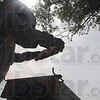 Tribune-Star/Joseph C. Garza<br /> In search of honey: Zeph Bowen is silhouetted against the sky as he checks one of his honeybee colonies for honey Tuesday at the his family's home.