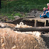 Tribune-Star/Joseph C. Garza<br /> The worst wait: Gary and Lester Jackson, the father and grandfather of Tyler Jackson, wait as rescue personnel clear brush on each side of the Markle Mill Dam after Tyler fell into the water early Tuesday morning.