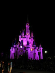 Disney2010 244