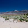 Gut das ich Wasser mithabe denn ich weiss nicht genau wo ich bin und ich fahre schoen seit 2.5 Stunden durch nur Wueste ohne einen Menschen gesehen zu haben...<br /> Hinter dem Berghang liegt uebrigens Death Valley - 60 miles away