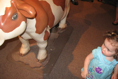 not so sure about the cow