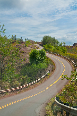 The road to Waimea Canyon was a little curvy and twisty and we saw this neat view of the road that I had to snap a photo of.
