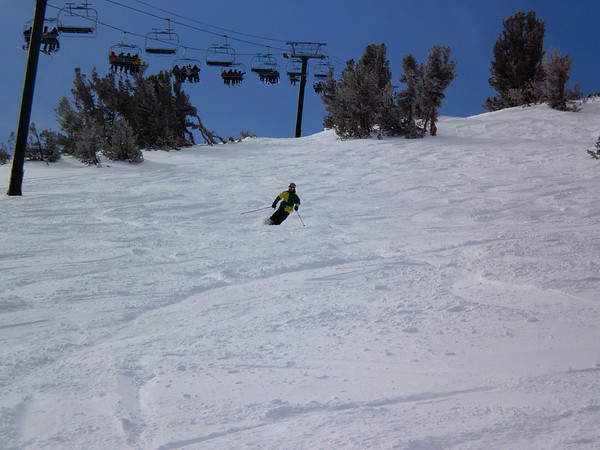 Aaron skiing down the powder on the backside @ Kirkwood.  Photo by Harrison Turner.
