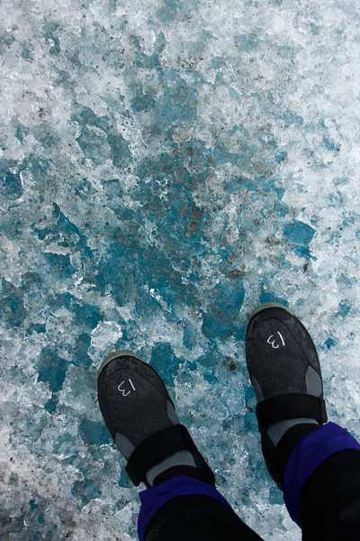 Light filters blue through the thick ice beneath my feet.