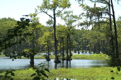 07 Lakeview South Carolina