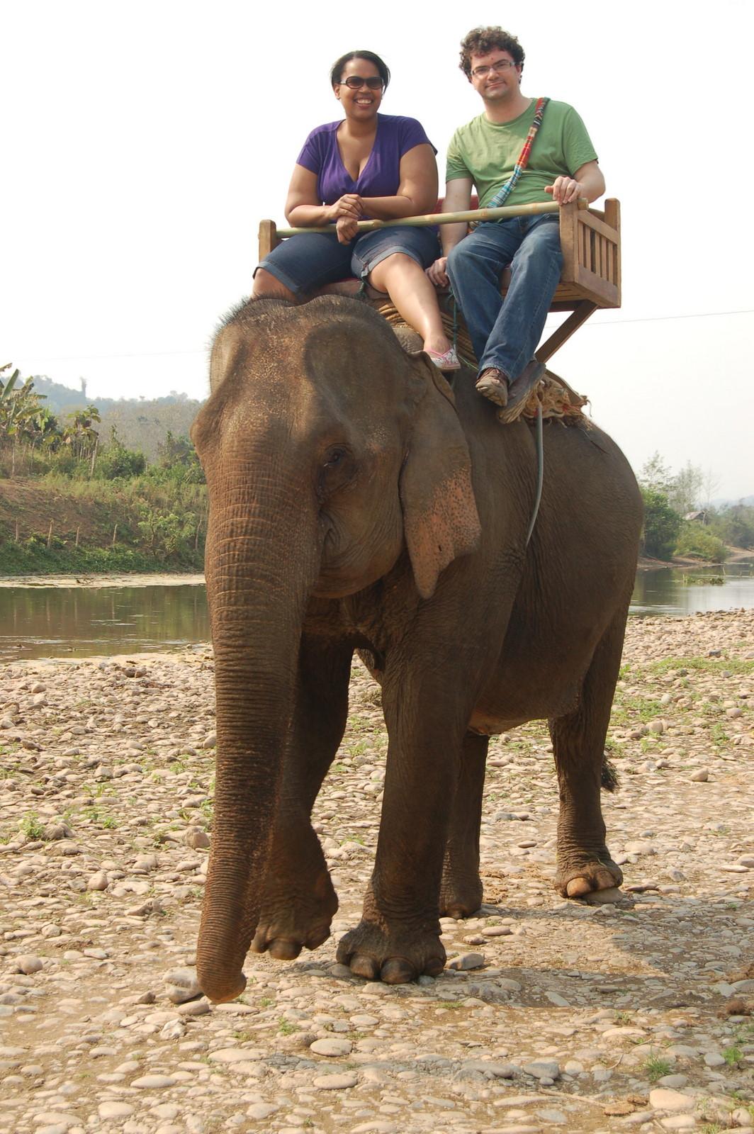 Atop elephant 3