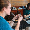 Tribune-Star/Joseph C. Garza<br /> Alternative Spring Break: Creighton University students Megan Nicklaus, 19, of Milwaukee, Wis., and Anya Burkart, 20, of Monument, Co., skirt alpaca fiber at the White Violet Center for Eco-Justice Thursday at St. Mary-of-the-Woods.
