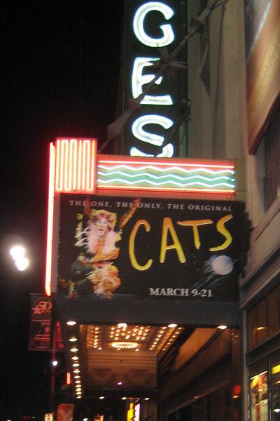 Cats for Jen's Birthday, 2010