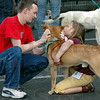 Dog lovers:  ISU student Colin Shipley and Addie Waltz give some attention to a dog up for adoption at the Petsmart parking lot Friday evening.