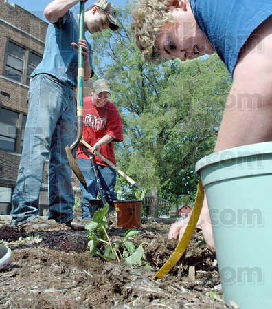 Green thumbs: McLean High School students Brandon Pritcher, Greg Tarwater and Seth Miller work on the school grounds Friday afternoon cleaning out and planting in the flower beds. They are helping spruce up the campus in honor of Earth Day.