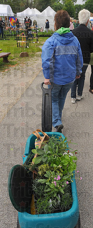 Wagon full: Robin White pulls her wagon throught eh Herb Faire. She found gomphrene, sage, flax, thyme, parsley and basil among other items.
