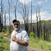 Happened here: Gary Earl shows one of the stands of trees that were destroyed by last year's pipeline explosion.