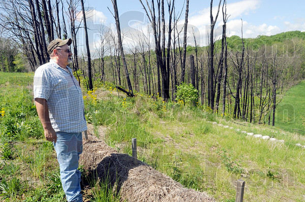 Charred: Gary Earl look over the area where a gas line explosion burned last year. He's waiting for a settlement to remove the burned trees from is property in rural Parke County.
