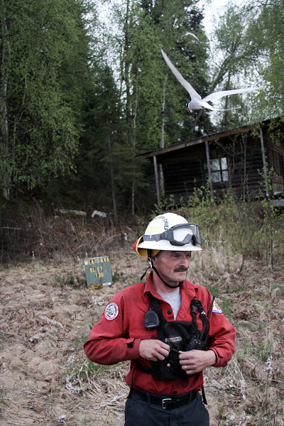 A tiny bird swings into a fake dive-bomb attack on a Big Lake fire Chief's helmet.