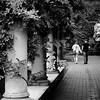 Eastman Gardens