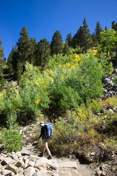 Fall colors near the trailhead