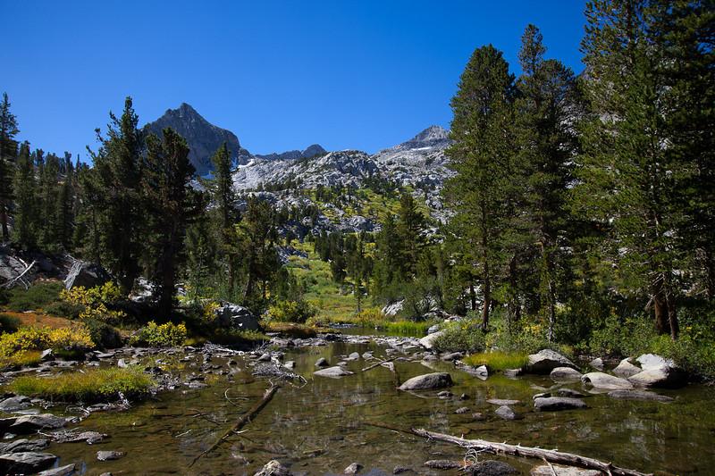 Treasure Creek and drainage