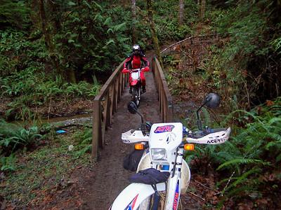 New Bridge Trail Ride