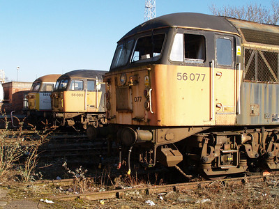 Class 56's line up outside Crewe Diesel Depot.