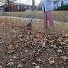 Good exercise: Dorothy Fears said she usually hires someone to do her yardwork but said with the nice weather Sunday she decided to do it herself.