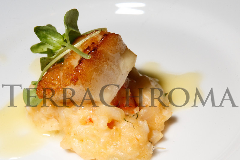 "(Denver, Colorado, Nov. 6, 2010)<br /> A sea bass hors d'oeuvre.  Four Seasons Hotel Denver hosts its grand opening party, themed ""Four Seasons Embraces Colorado,"" benefiting The Denver Center for Performing Arts, The Denver Zoo, The Kempe Foundation, and The University of Colorado Hospital Foundation, at the Four Seasons Hotel Denver in Denver, Colorado, on Saturday, Nov. 6, 2010.<br /> STEVE PETERSON"
