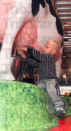 "Tribune-Star/Joseph C. Garza<br /> He'll pour his own milk: Four-year-old Ryland Hayes puts forth an effort to milk the cow in the ""Follow Your Food"" exhibit at the Terre Haute Children's Museum Friday, Sept. 24."