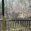 View of the back of the house.  Mostly wooded lot.  1.25 acres