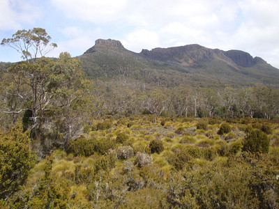 Paddys Nut & Mt Thetis from Frog Flats