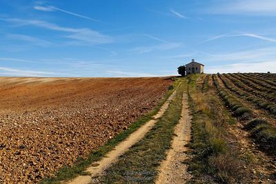 Plateau d'Entrevennes (04)